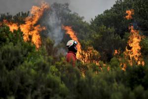Pedido dispositivo contra incêndios igual a 2014