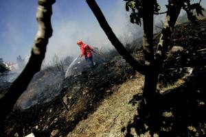 Incêndio de Caminha dominado pelos bombeiros