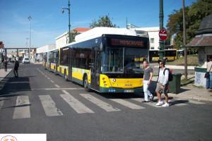 Lisboa e Porto recusam nova lei dos transportes