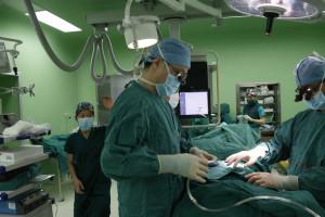 Quatro crianças morrem após transplante de células estaminais