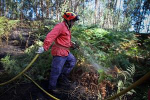 Vinte e seis concelhos em risco máximo de incêndio