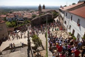 Festival Chocalhos regressa em setembro e ajuda a economia local