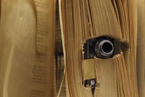 Portuguesa de 15 anos vence prémio internacional de fotografia