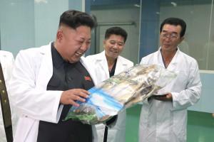 Coreia do Norte lança manual de etiqueta para uso de telemóvel