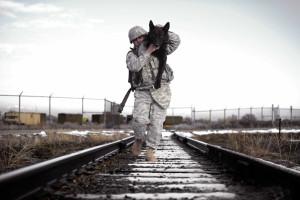 Homem e animal: Lealdade em tempo de guerra