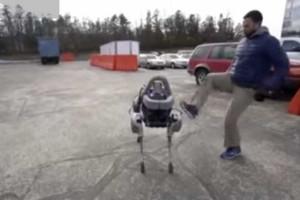Vídeo de pontapés a cão robot gera polémica