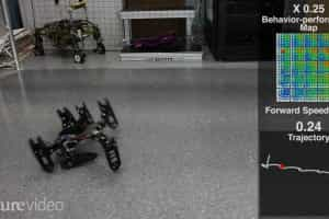 Robot adapta-se a perda de perna e aprende a coxear