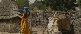 Triplo atentado atribuído ao grupo Boko Haram faz pelo menos 37 mortos no lago Chade