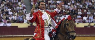 Cavaleiro Joaquim Bastinhas ferido com gravidade por máquina agrícola