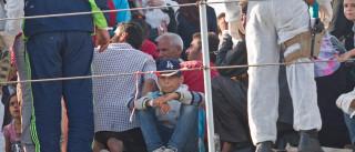 Desde janeiro, mais de 300 mil refugiados atravessaram Mediterrâneo