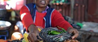 Moçambique declara guerra aos sacos plásticos e consumidores aplaudem
