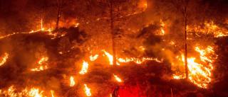 Um morto e milhares de retirados devido a violentos incêndios