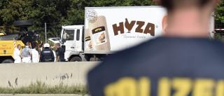 Sobe para 70 número de mortos em camião abandonado na Áustria