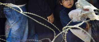 Hungria anuncia conclusão de barreira anti-imigrantes na fronteira