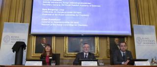 Tomas Lindhal, Paul Modrich e Aziz Sancar vencem Nobel da Química