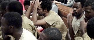 Luaty Beirão pede em tribunal que José Eduardo dos Santos deixe o poder