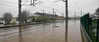 Proteção Civil regista 580 situações até às 20h00, a maioria inundações