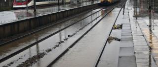 Circulação de comboios reposta entre Aveiro e Estarreja