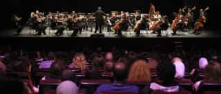Concerto 'Espírito Radical' abre hoje última edição do Próximo Futuro