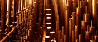 Orquestra Clássica do Sul atua com Vitorino e Carlos Guilherme