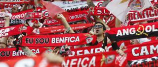 Dois jogadores do Benfica no 'onze' sul-americano da Champions
