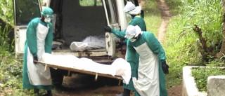 Casos de Ébola diminuem, mas há possibilidade de novo surto