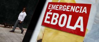 Ébola: OMS considera possível acabar com epidemia até final do ano