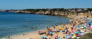 Zomato planeia expansão para o Algarve
