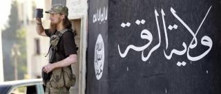 Estado Islâmico expulso de cidade do nordeste da Síria