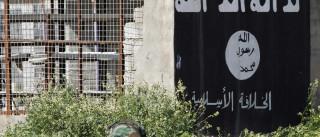 Estado Islâmico aproxima-se da cidade de Alepo