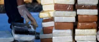 Quase meia tonelada de cocaína apreendida pela Polícia Judiciária