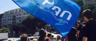 """PAN: """"Vamos ser a surpresa positiva das eleições"""""""