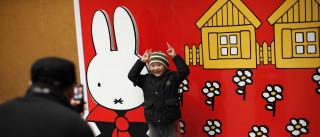 Museu acolhe exposição de homenagem ao autor de Miffy