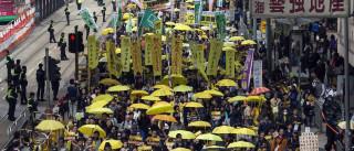 Responsáveis do movimento 'Occupy' dizem-se inocentes