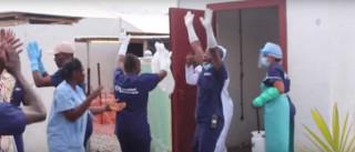 Médicos celebram vitória do último paciente sobre o Ébola