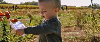 Crianças criadas no campo são mais resistentes a alergias