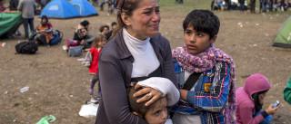 Cinco feridos em briga entre migrantes afegãos e albaneses