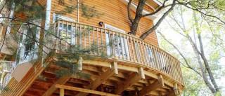 'Super avô' constrói casa de árvore com três andares