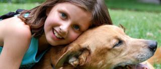Como ajudar uma criança a lidar com a morte de um animal