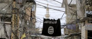 Desmantelada célula do Estado Islâmico em Marrocos