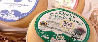 """Com controlo posterior, """"não é preciso deixar de comer queijo"""""""