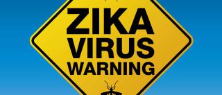Zika: Reforçar monitorização nas fronteiras é ineficaz