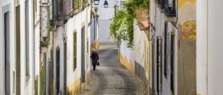 Regulamento do património de Lisboa não é aplicado por estar obsoleto