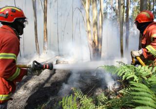 Cerca de 150 operacionais combatem chamas na zona de Alqueva