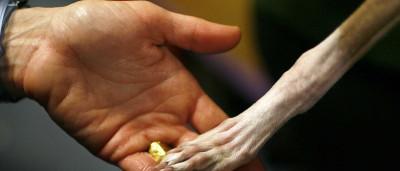 Deprimida com fim da relação, deixa cães morrer à fome