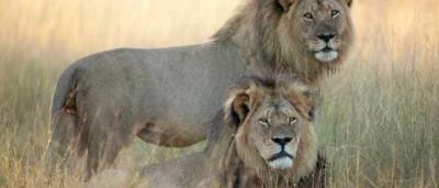 Leão Jericó, irmão de Cecil, morto a tiro este sábado