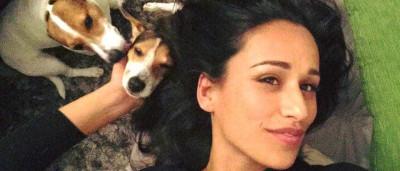 Descubra onde dormem as cadelas de Rita Pereira