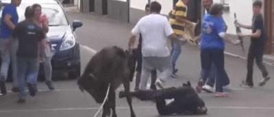 Agente da PSP colhido em tourada. Momento registado em vídeo