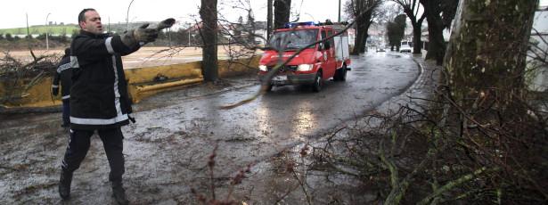 Mau tempo provoca queda de 30 árvores em Beja