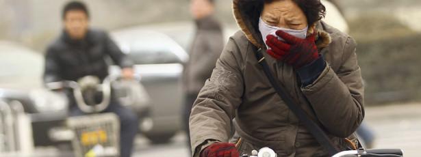 Atenção: Há uma nova estirpe de gripe das aves